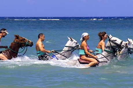 Cool Beach Horse Back Ride and Swim
