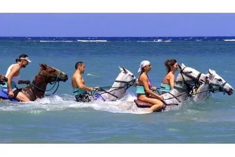 Cool Beach Horse Back Ride and Swim